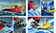 Newfoundland Dog to the Rescue for Chickadee Magazine