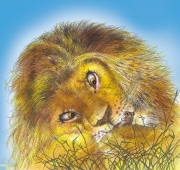 The Lion  &  Mouse for McGraw-Hill